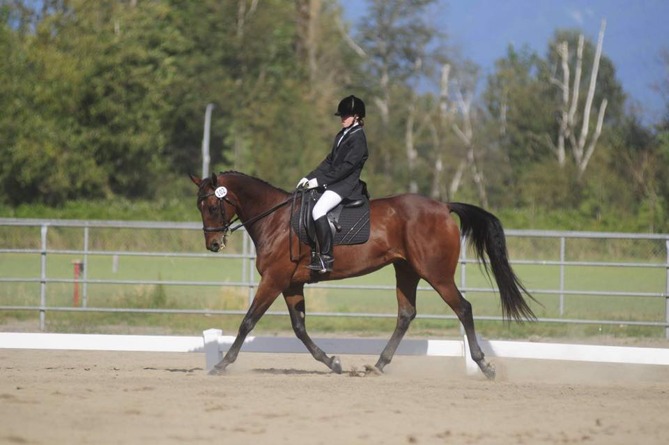 Horsemanship Clinic June 5th and 6th